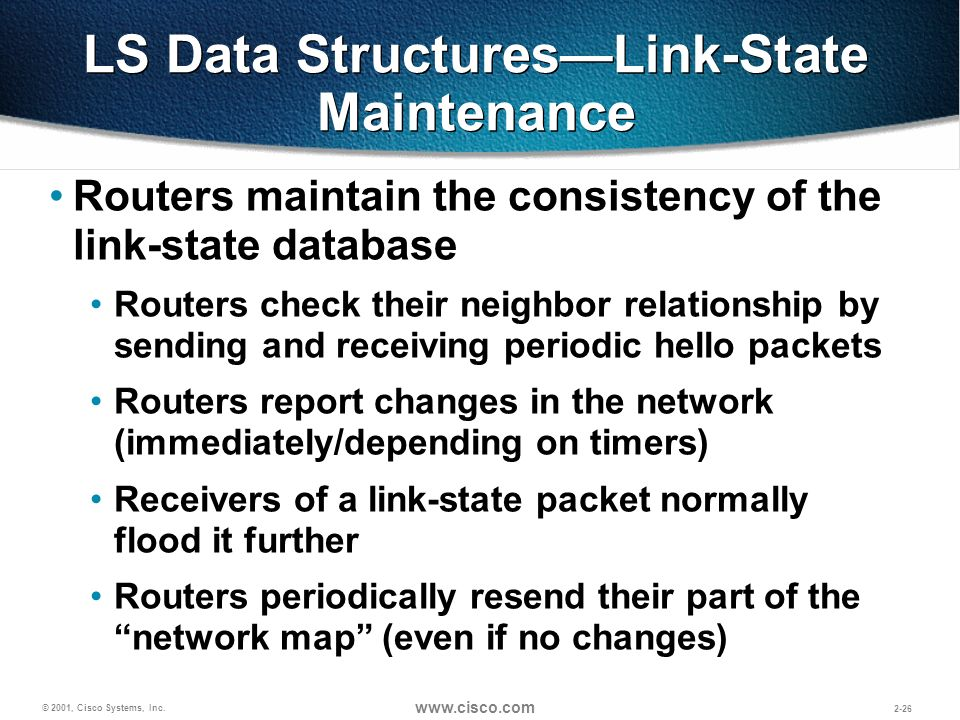 LS Data Structures—Link-State Maintenance