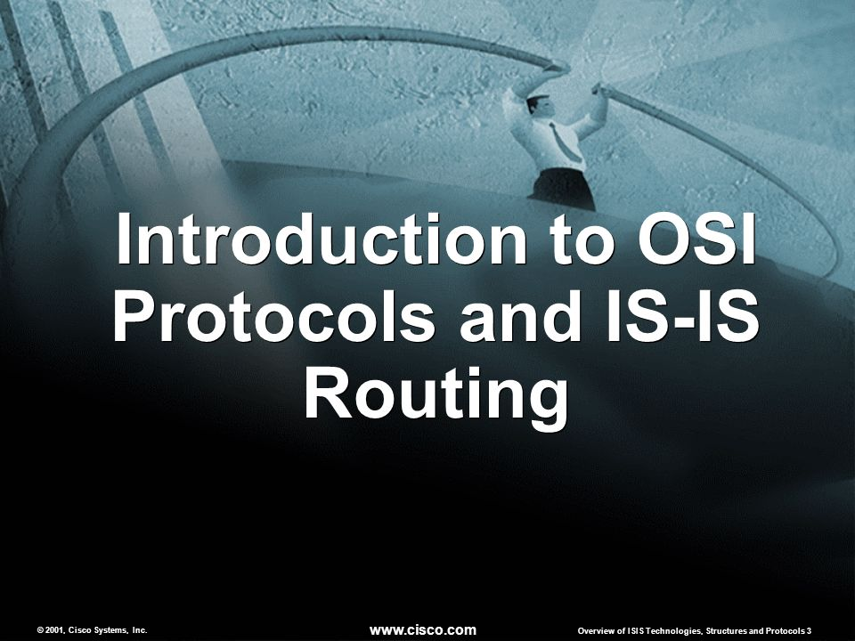 Introduction to OSI Protocols and IS-IS Routing