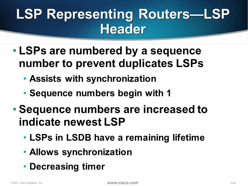 LSP Representing Routers—LSP Header