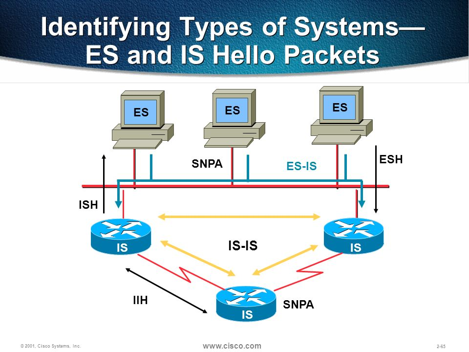 Identifying Types of Systems— ES and IS Hello Packets
