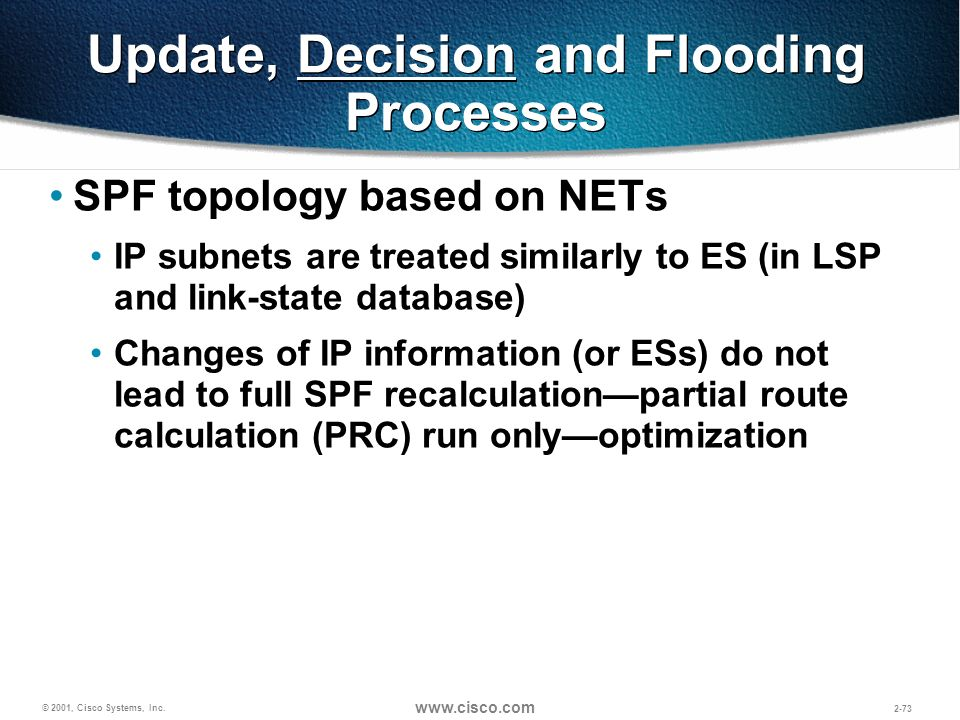 Update, Decision and Flooding Processes