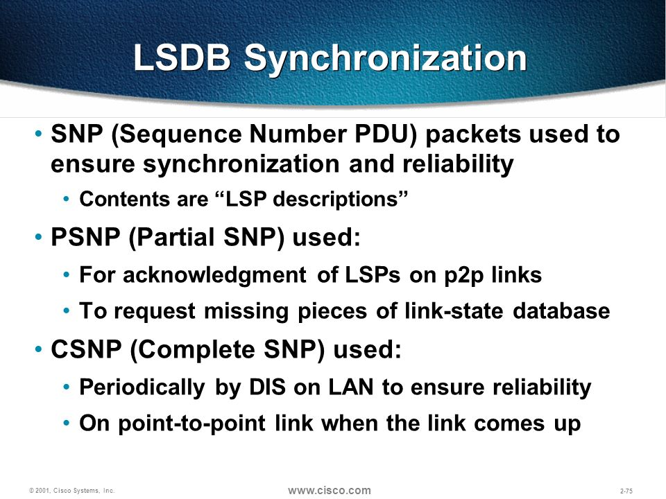 LSDB Synchronization SNP (Sequence Number PDU) packets used to ensure synchronization and reliability.