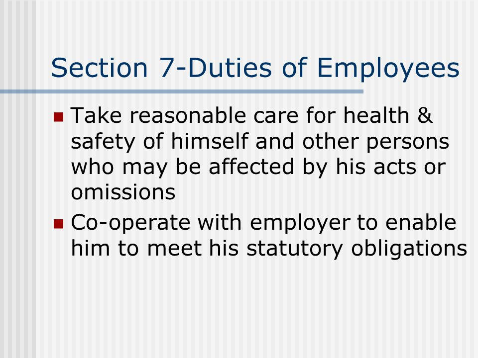 Section 7-Duties of Employees