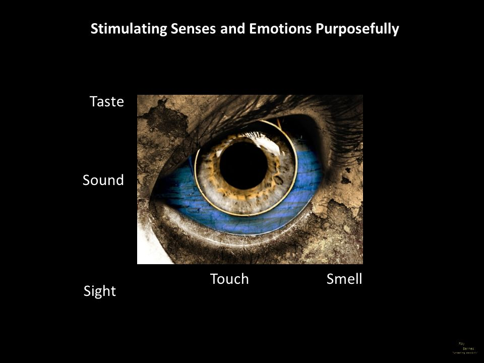 Stimulating Senses and Emotions Purposefully