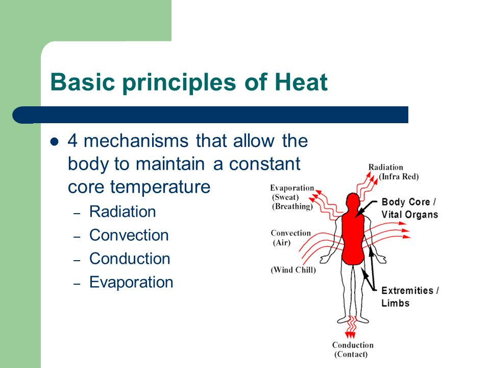 Basic principles of Heat