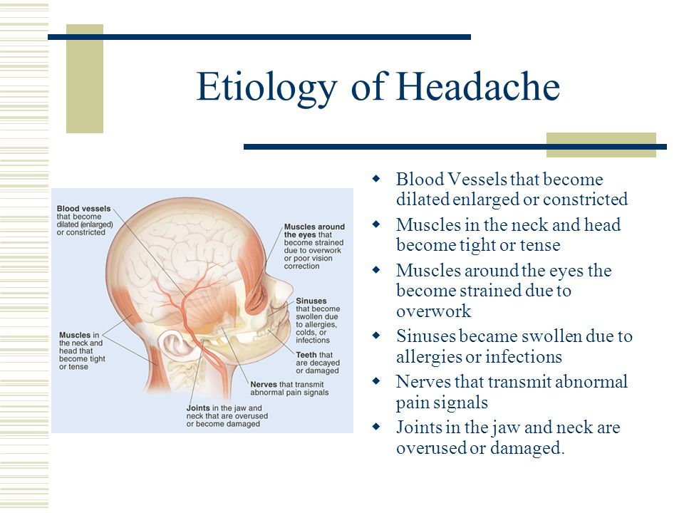 Etiology of Headache Blood Vessels that become dilated enlarged or constricted. Muscles in the neck and head become tight or tense.