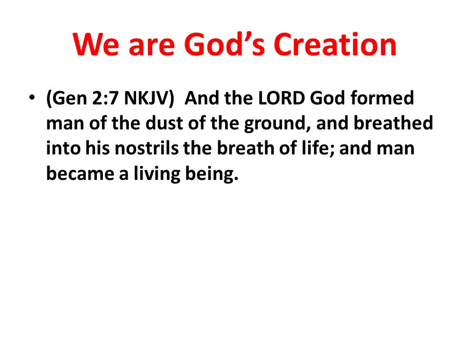 We are God's Creation
