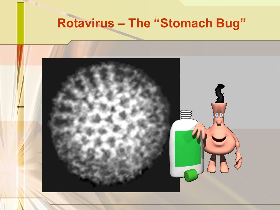 Rotavirus – The Stomach Bug