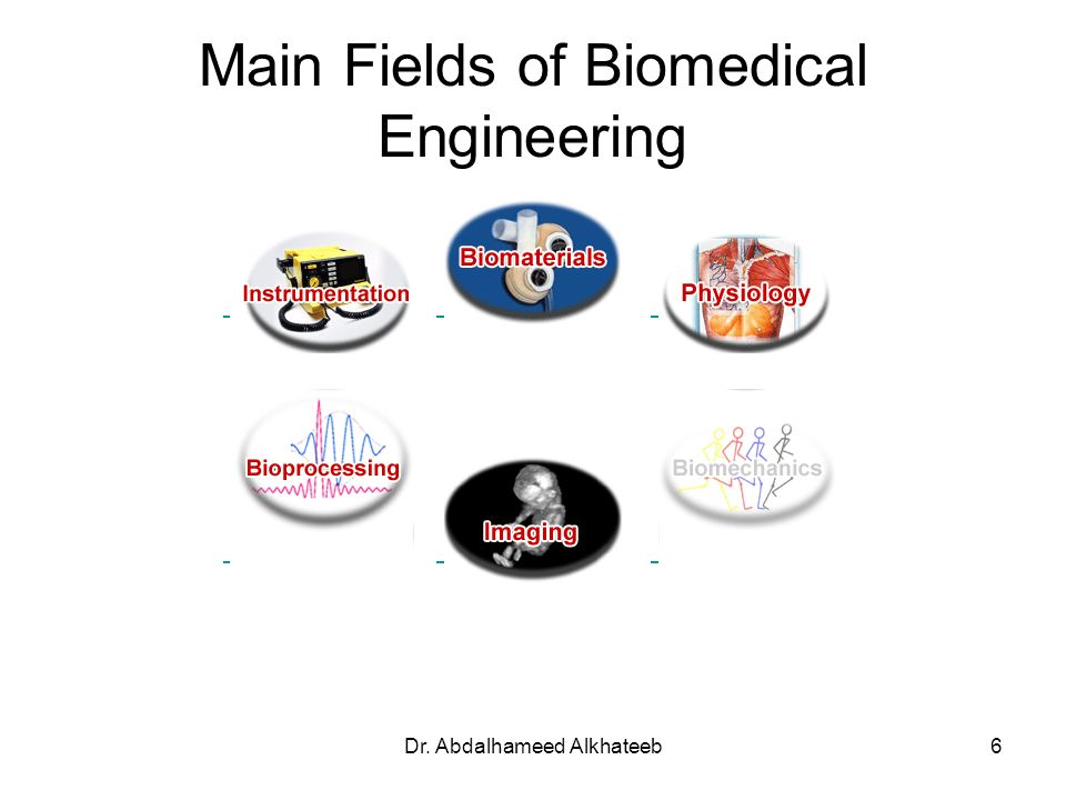 Main Fields of Biomedical Engineering