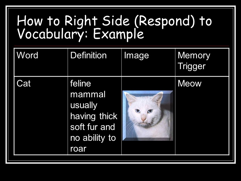 How to Right Side (Respond) to Vocabulary: Example