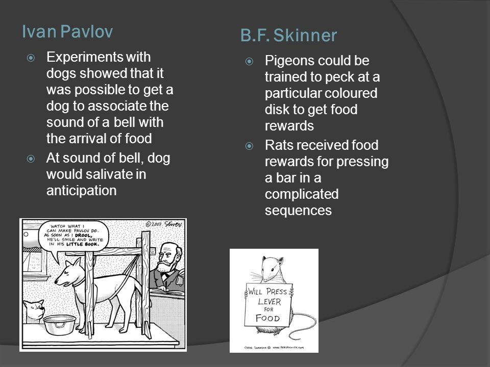 Ivan Pavlov B.F. Skinner. Experiments with dogs showed that it was possible to get a dog to associate the sound of a bell with the arrival of food.