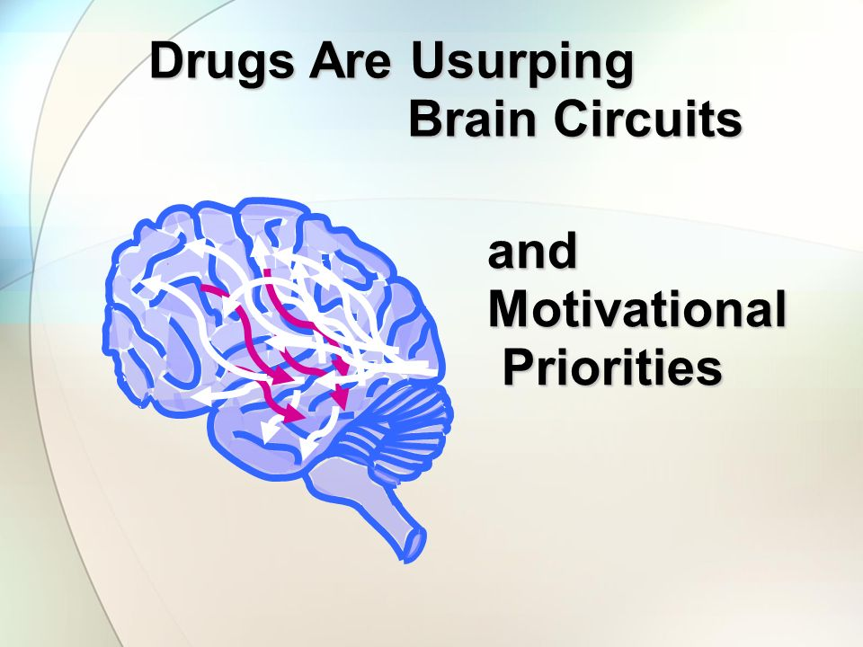 Drugs Are Usurping Brain Circuits and Motivational Priorities
