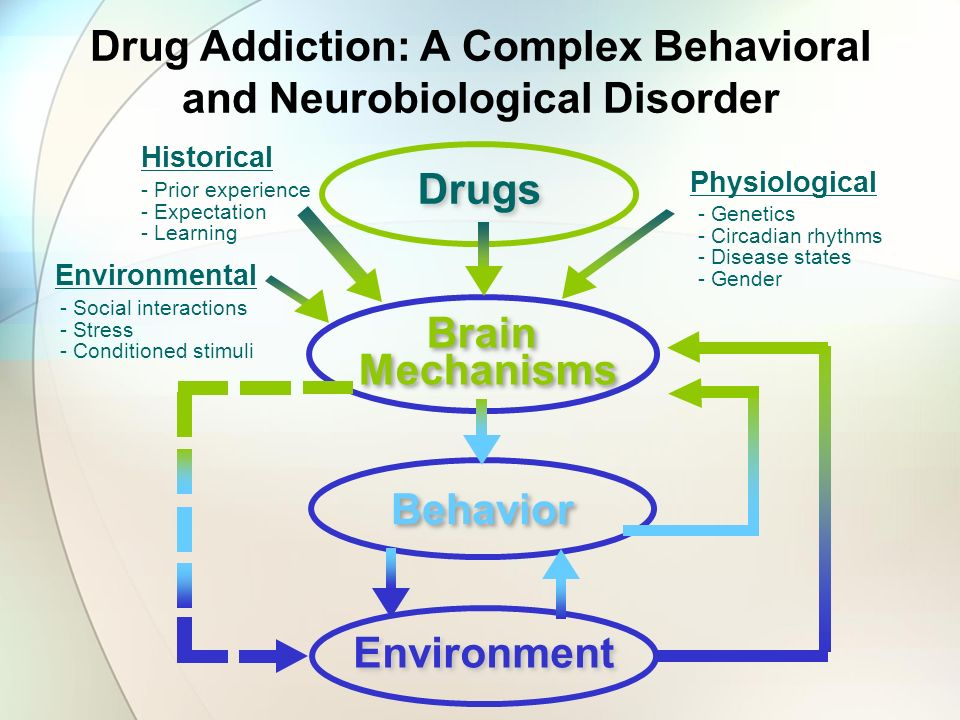 Drug Addiction: A Complex Behavioral and Neurobiological Disorder