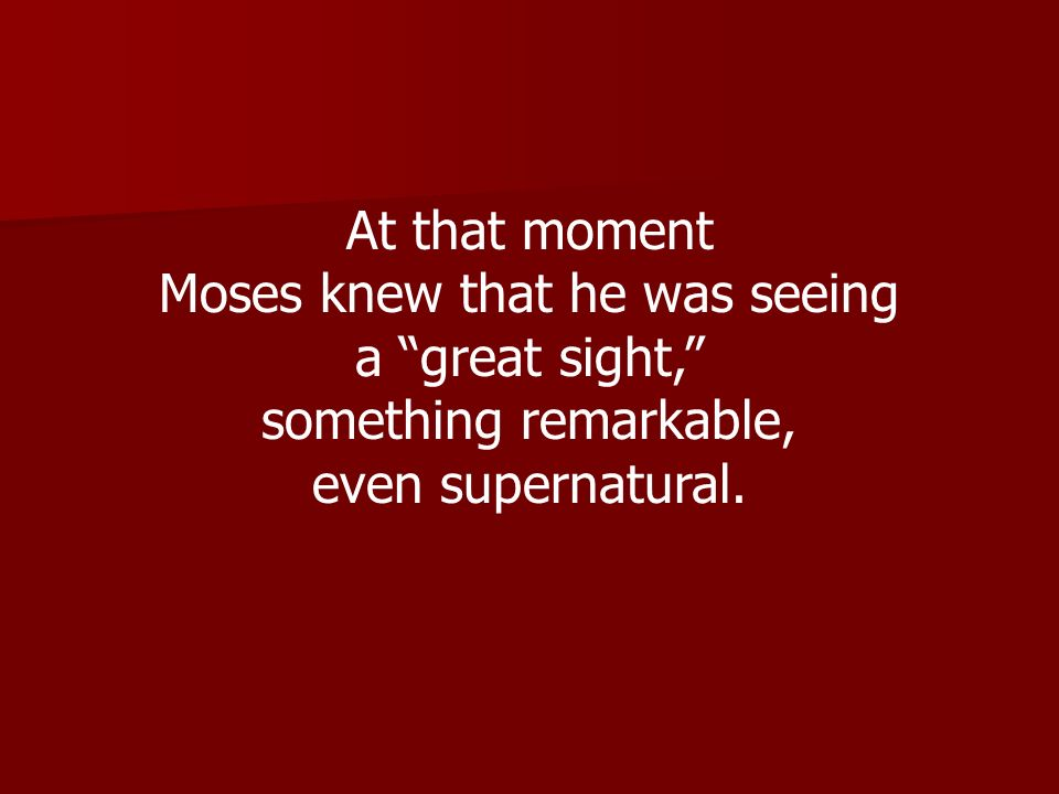 Moses knew that he was seeing