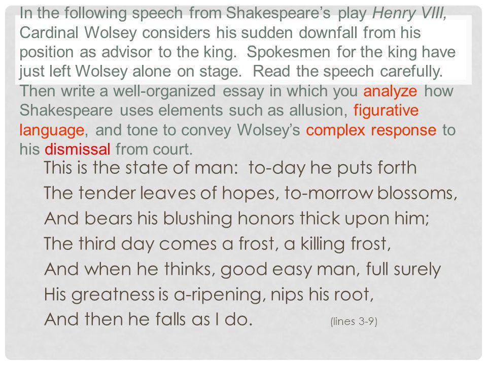 cardinal wolsey speech analysis