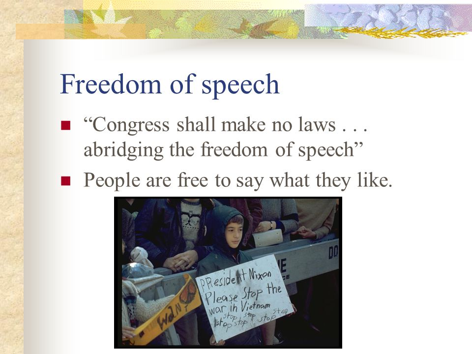 Freedom of speech Congress shall make no laws .