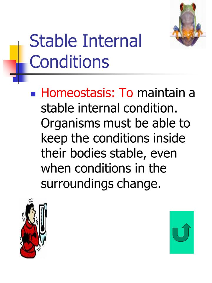Stable Internal Conditions