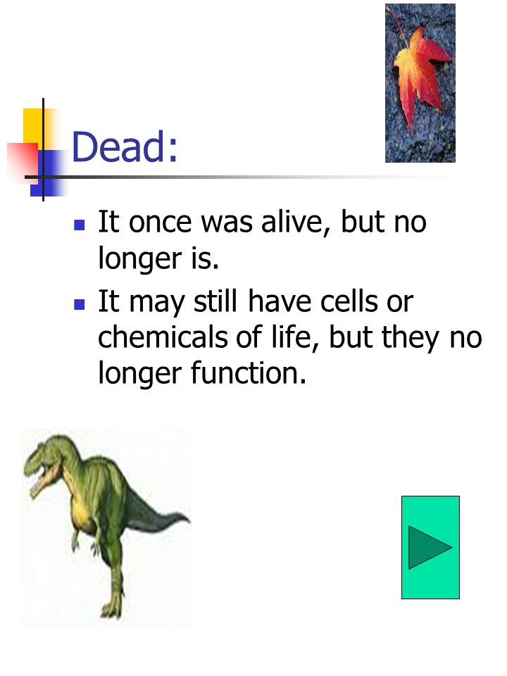 Dead: It once was alive, but no longer is.