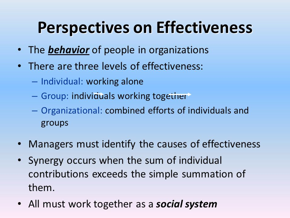 Perspectives on Effectiveness
