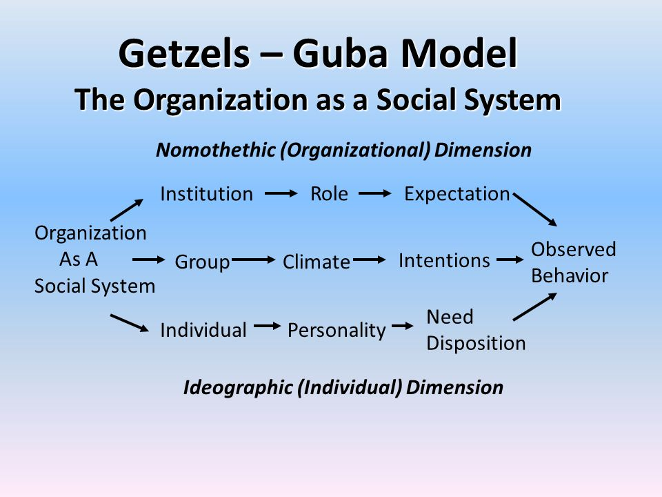 The Organization as a Social System