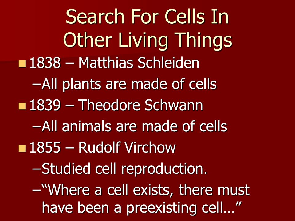 Search For Cells In Other Living Things