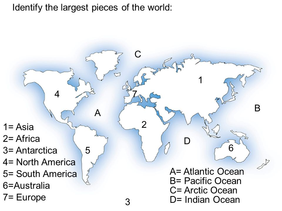 Identify the largest pieces of the world: