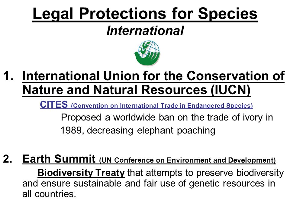 Legal Protections for Species International