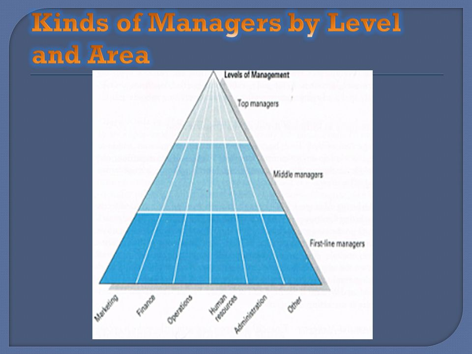 Kinds of Managers by Level and Area