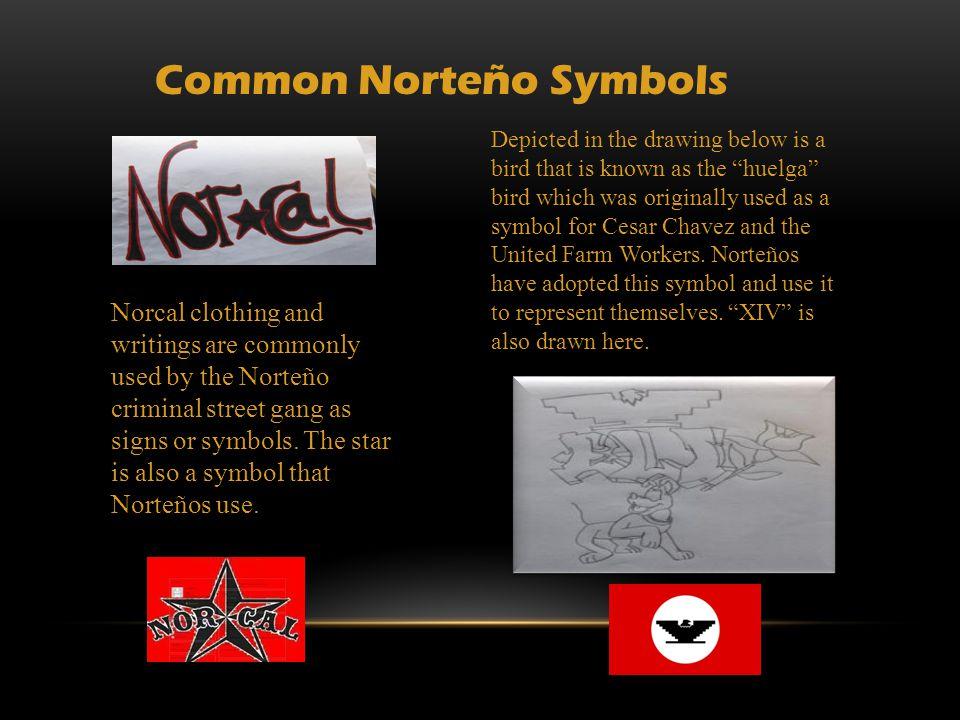 Santa Cruz Norteo Graffiti Ppt Download