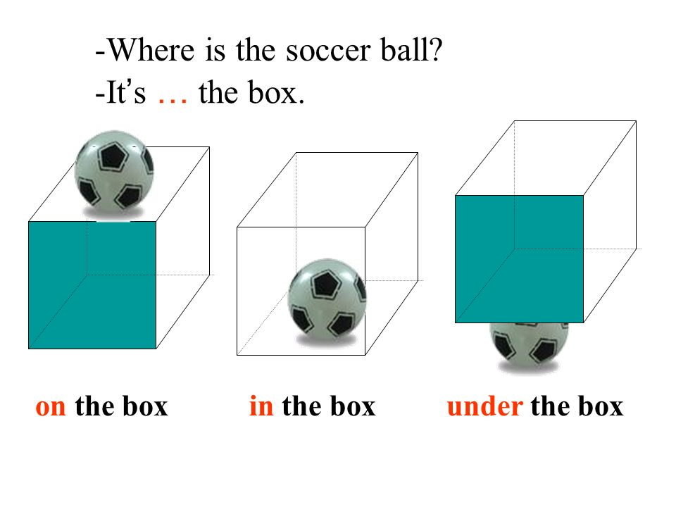 -Where is the soccer ball -It's … the box.