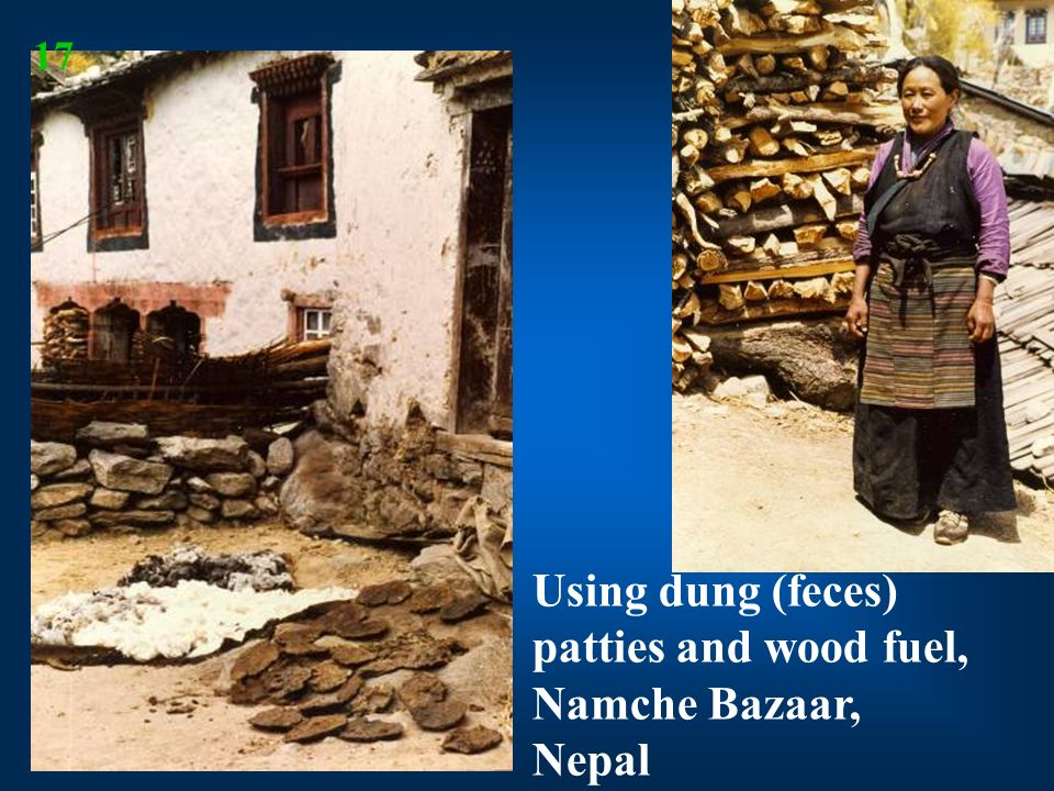 Using dung (feces) patties and wood fuel, Namche Bazaar, Nepal