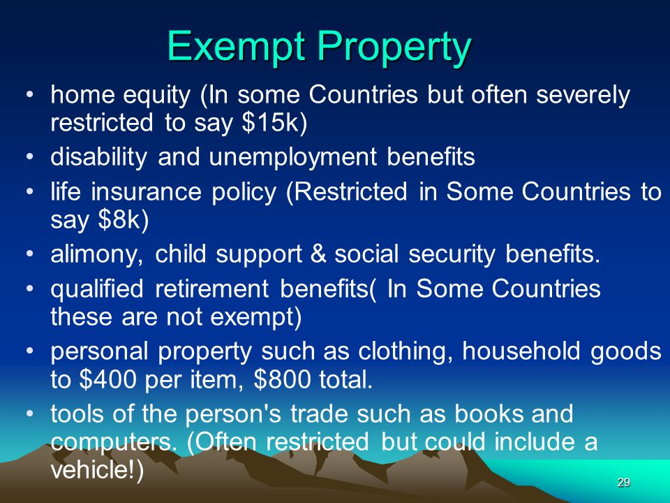 Exempt Property home equity (In some Countries but often severely restricted to say $15k) disability and unemployment benefits.