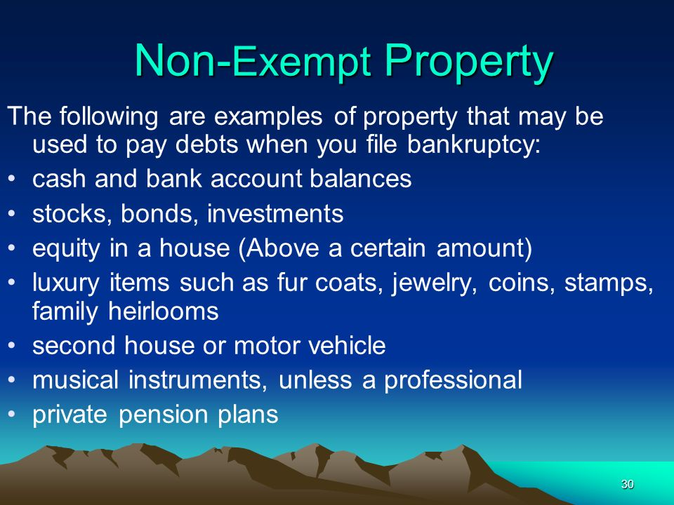 Non-Exempt Property The following are examples of property that may be used to pay debts when you file bankruptcy: