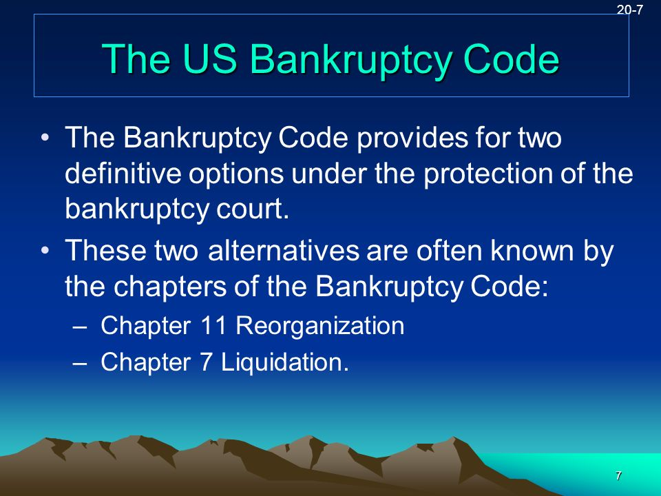 20-7 The US Bankruptcy Code. The Bankruptcy Code provides for two definitive options under the protection of the bankruptcy court.