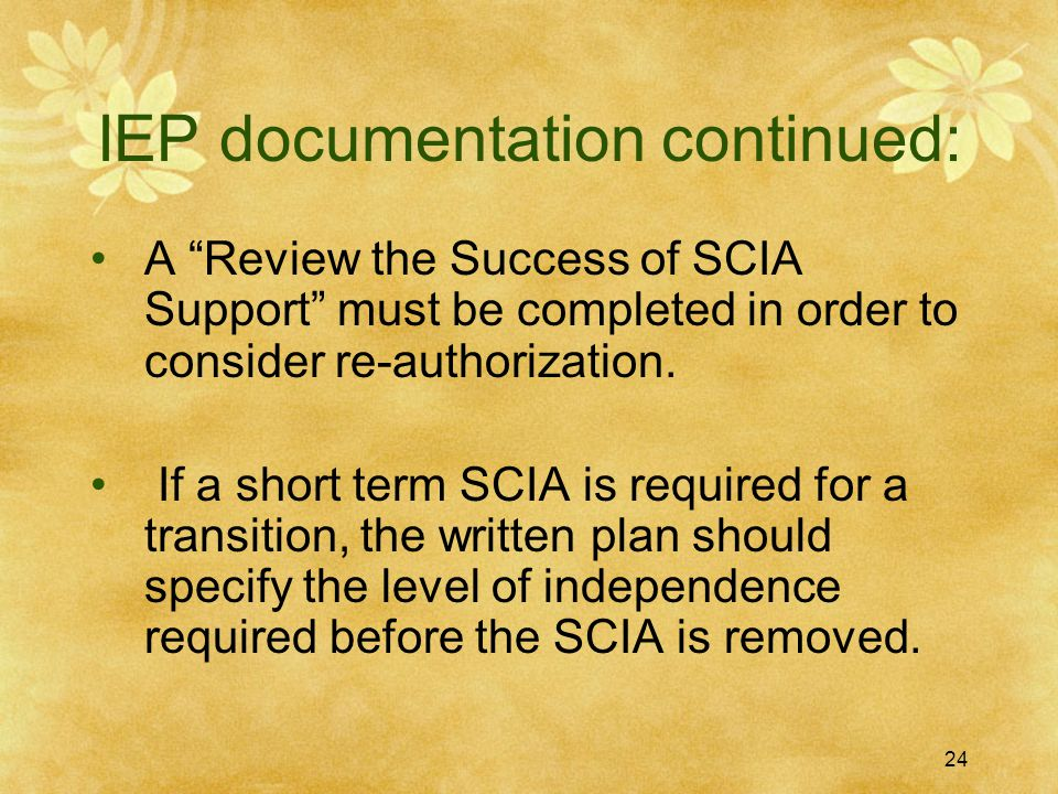 IEP documentation continued: