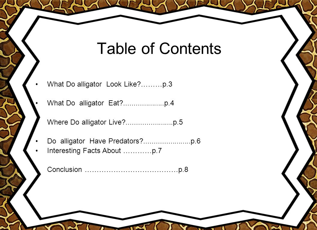 Table of Contents What Do alligator Look Like ………p.3