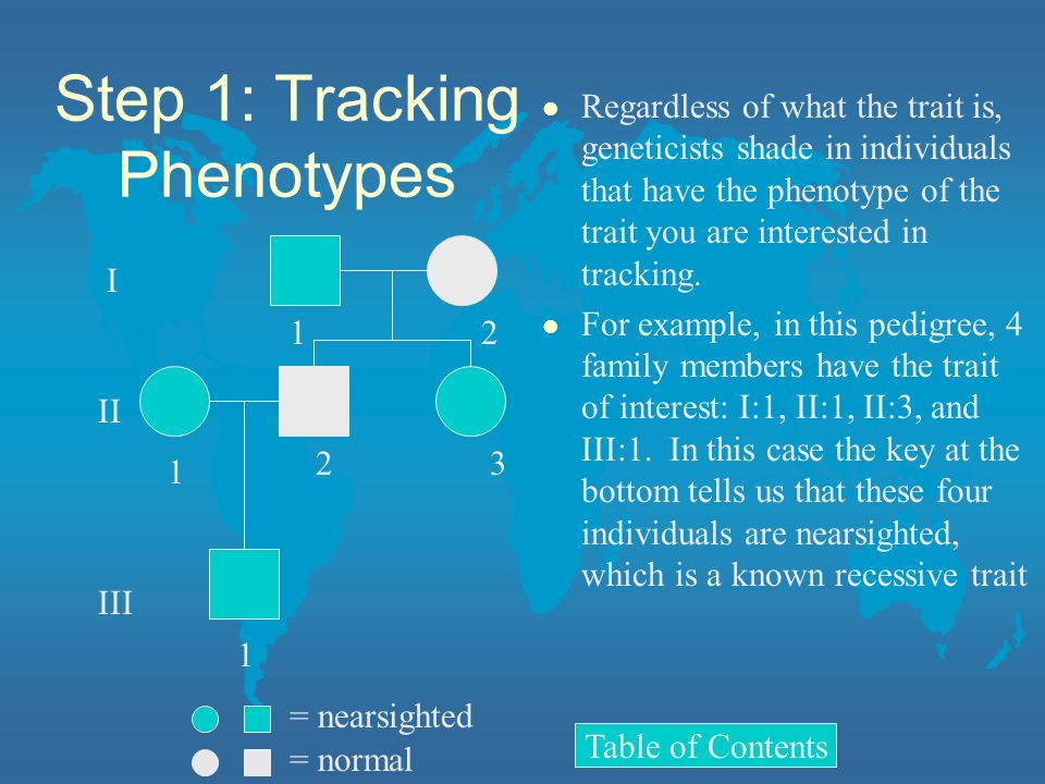Step 1: Tracking Phenotypes
