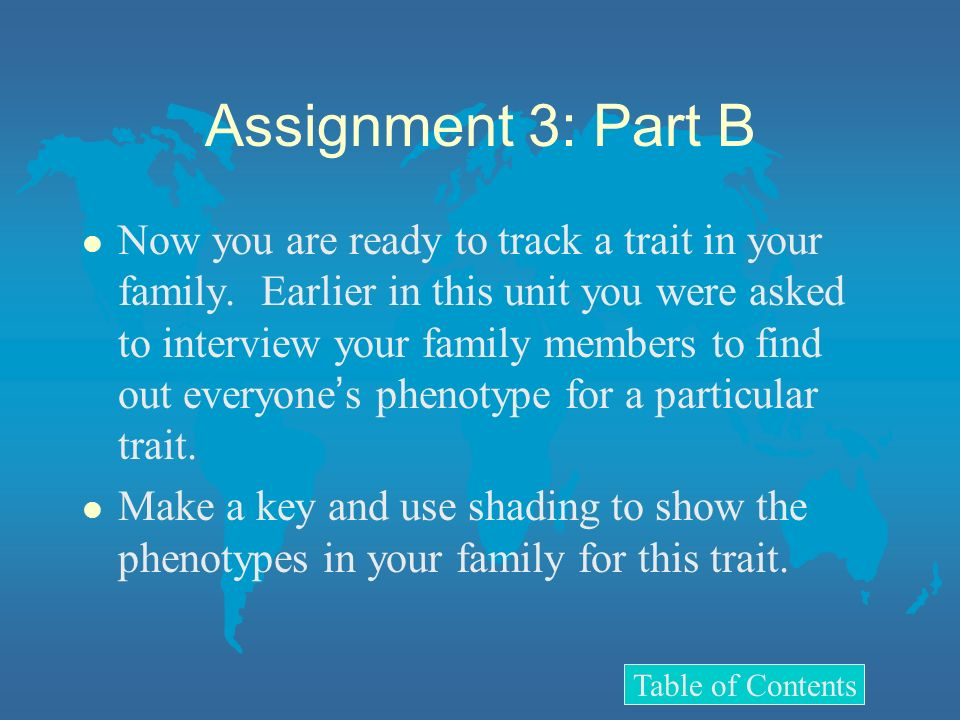 Assignment 3: Part B