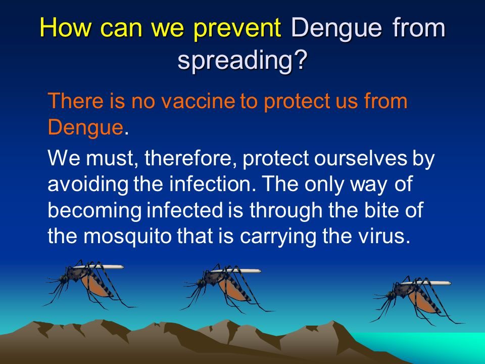 How can we prevent Dengue from spreading