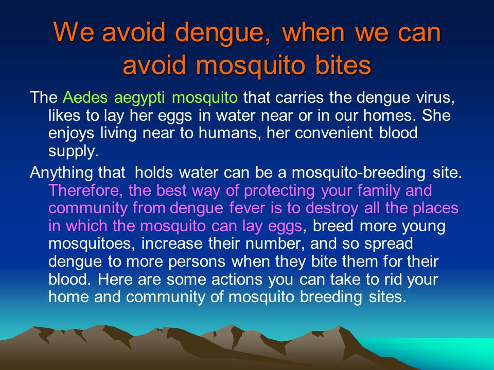 We avoid dengue, when we can avoid mosquito bites