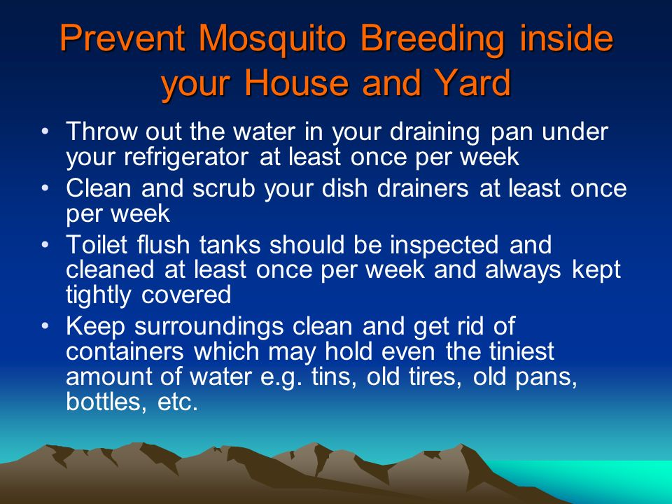 Prevent Mosquito Breeding inside your House and Yard