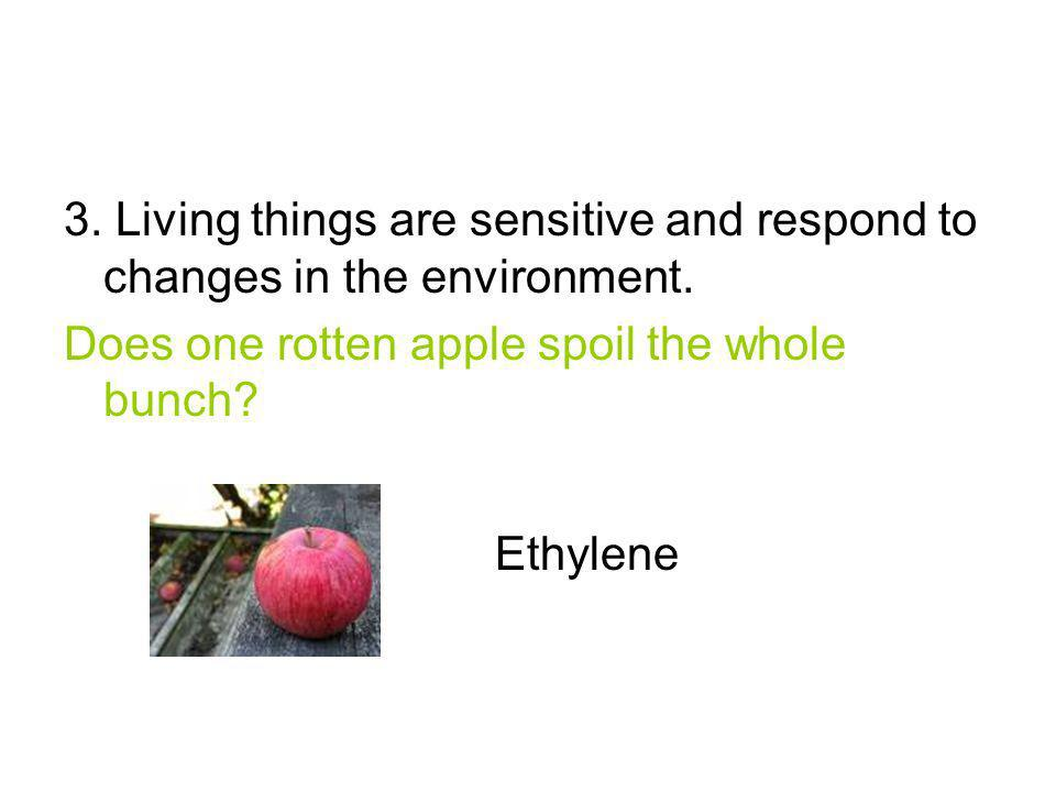 3. Living things are sensitive and respond to changes in the environment.