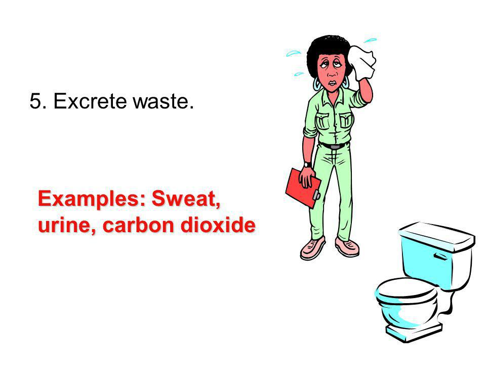 5. Excrete waste. Examples: Sweat, urine, carbon dioxide