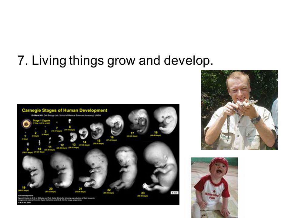 7. Living things grow and develop.