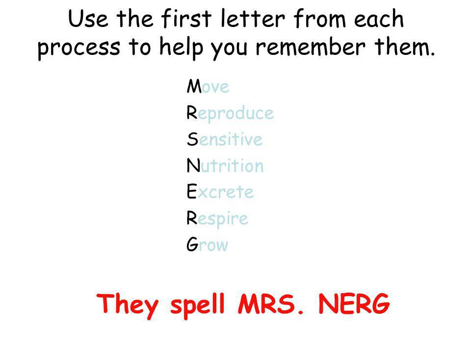 Use the first letter from each process to help you remember them.