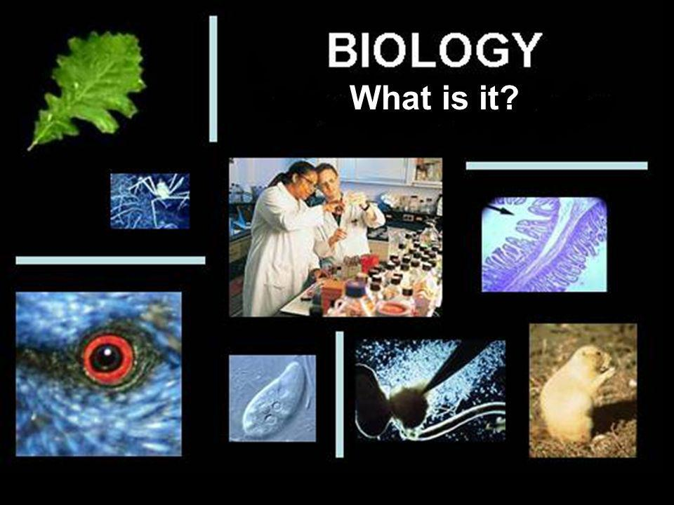 What is it What is Biology
