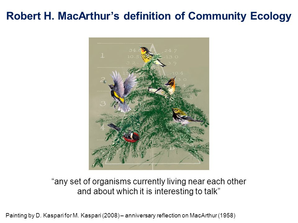 Robert H. MacArthur's definition of Community Ecology