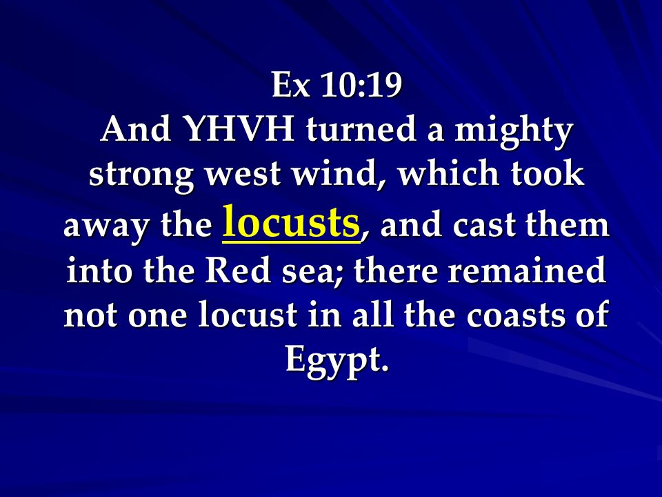 Ex 10:19 And YHVH turned a mighty strong west wind, which took away the locusts, and cast them into the Red sea; there remained not one locust in all the coasts of Egypt.