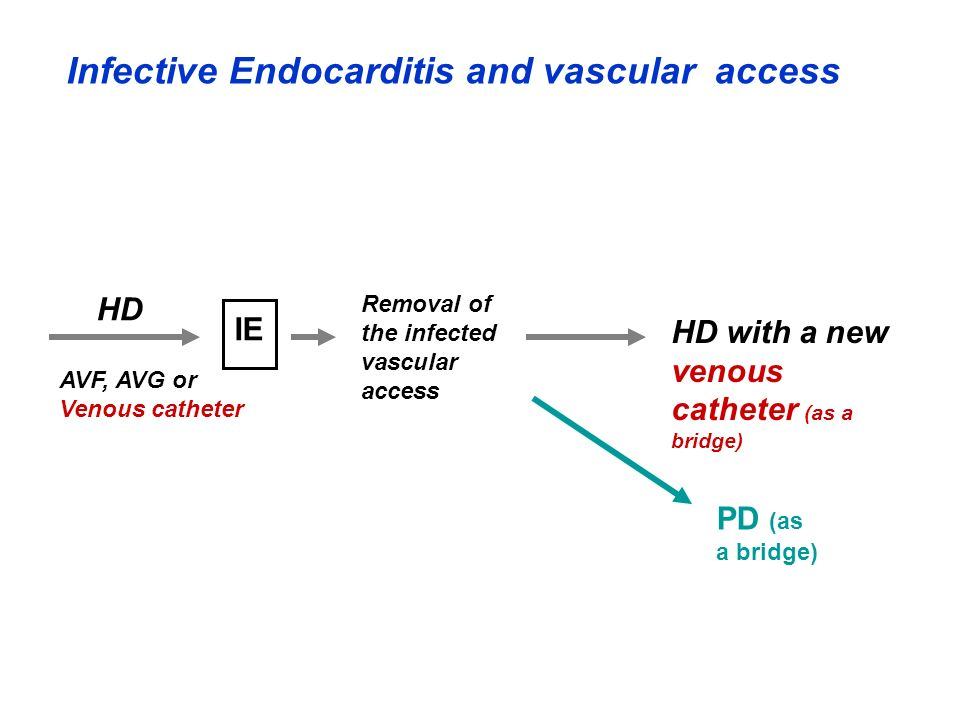 Infective Endocarditis and vascular access