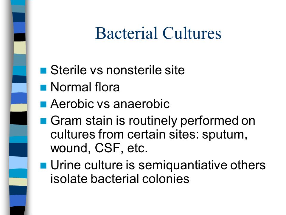 Bacterial Cultures Sterile vs nonsterile site Normal flora